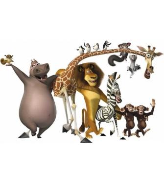 Madagaskar 01