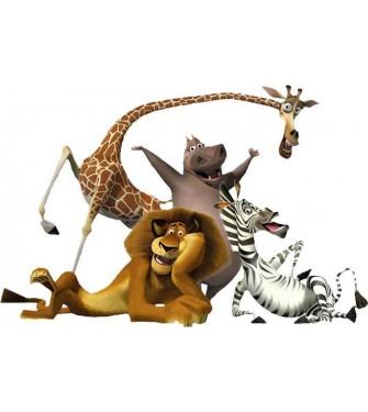 Madagaskar 03